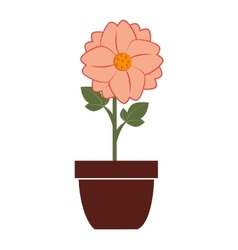 Flower vase colorful icon vector