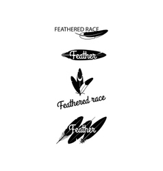 Black feathers silhouettes for logotype design vector image vector image
