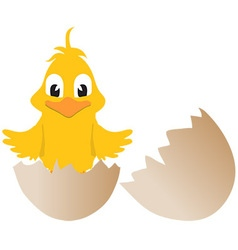 Easter chick and broken egg vector