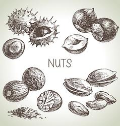Hand drawn sketch nuts set of eco food vector image vector image