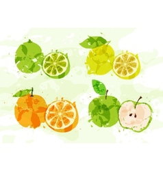 Set of colorful fresh fruit stains vector