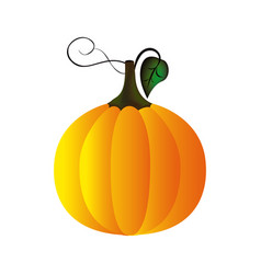 Colorful pumpkin vegetable halloween icon vector