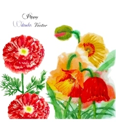 Watercolor background with red poppy-05 vector
