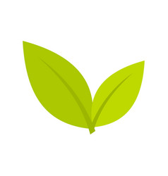 Leaf icon flat style vector