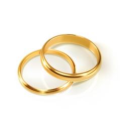 Pair of wedding rings vector image