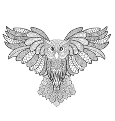 Eagle owl adult antistress coloring page vector