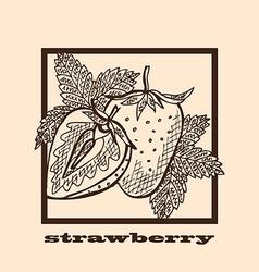 hand drawn strawberries vector image vector image