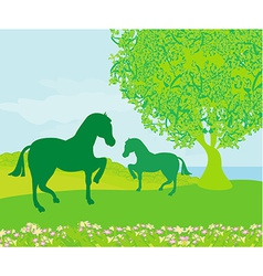 Horses in field vector image