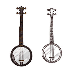 Sketch banjo guitar musical instrument vector