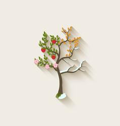 four seasons trees vector image