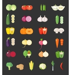 Set of flat vegetables vector