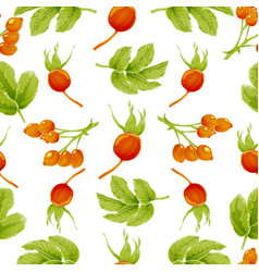 Seamless autumn pattern with berries and leaves vector