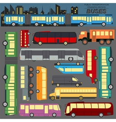 Public transportation buses set elements vector