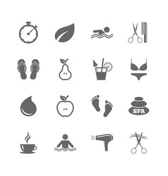 Set of swimming pool spa and hairdressing icons vector