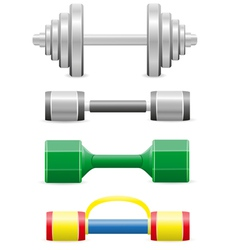 Dumbbells for fitness vector