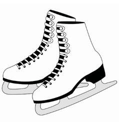 Figure white skates vector image