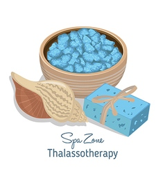 Spa theme object on white background vector