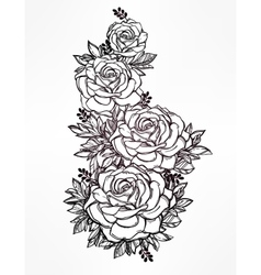 Vintage floral hand drawn rose flower stem vector