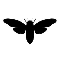 Silhouette cicada cicadidae sketch of cicada vector