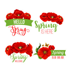 Spring time greeting quotes poppy flowers vector