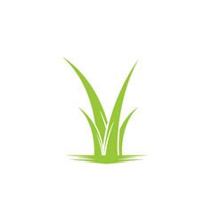 grass leaf landscape icon element vector image