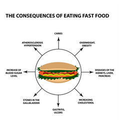 the harmful effect of fast food on the human body vector image