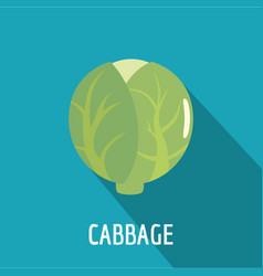 cabbage icon flat style vector image