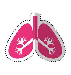 Lungs human organ icon vector