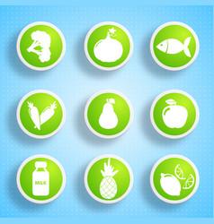 Healthy food icons set vector