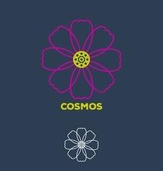Cosmos vector