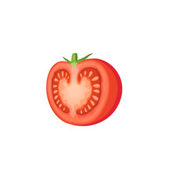 cut tomato icon vector image