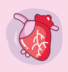 Heart organ with blood circulation for the veins vector