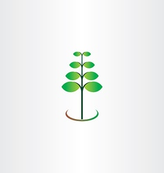 Eco spring plant leaf green vector