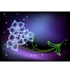 flowers and stars vector image
