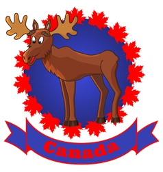 moose and canada vector image vector image