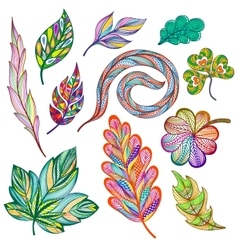 Set of colorful abstract leaves vector