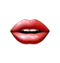 Realistic female lips vector