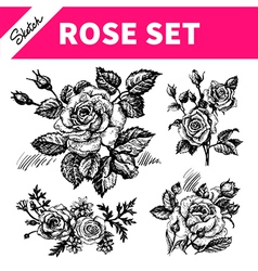 Sketch floral set vector image