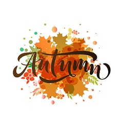 Autumn lettering typography vector