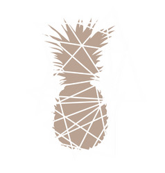 Pineapple beige abstract pineapple vector