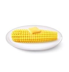 Realistic corn cob vector