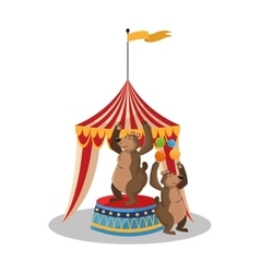 Tent and bear of circus and carnival design vector