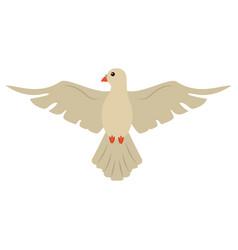 Holy spirit dove symbol catholic vector