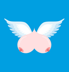 breast flying flying tit sorority logo female vector image