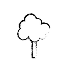 Isolated tree nature vector