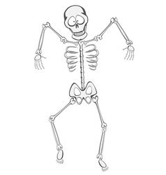 Skeleton Buddy vector image