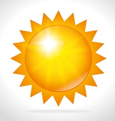 Summer sun design vector image