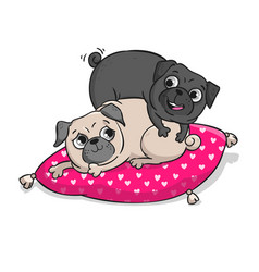 Cute pugs isolated on white background vector