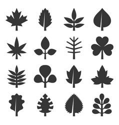 Leaf icons set on white background vector
