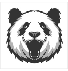 Portrait of Panda Aggressive face bears vector image vector image